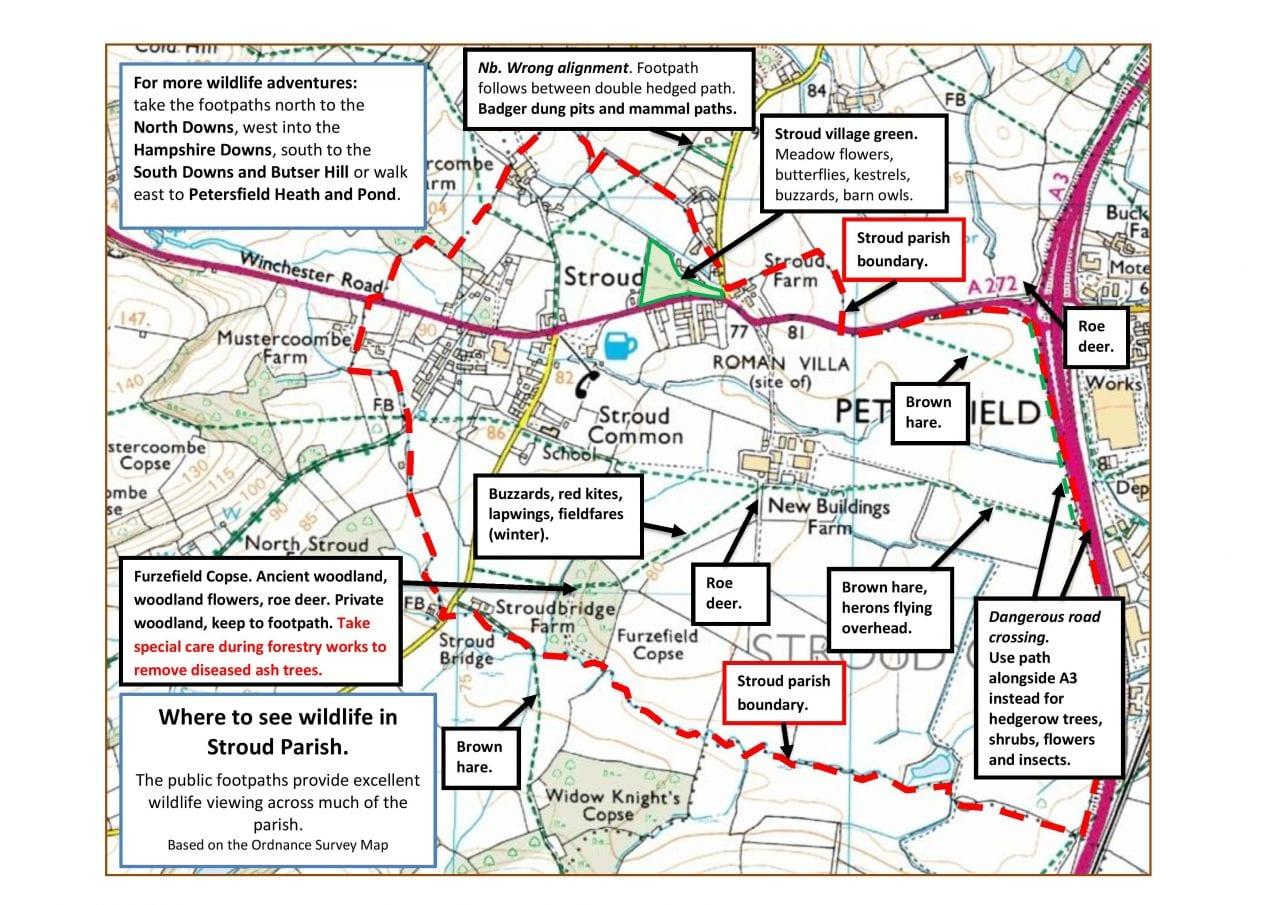 Stroud Wildlife Map by Ron Allen