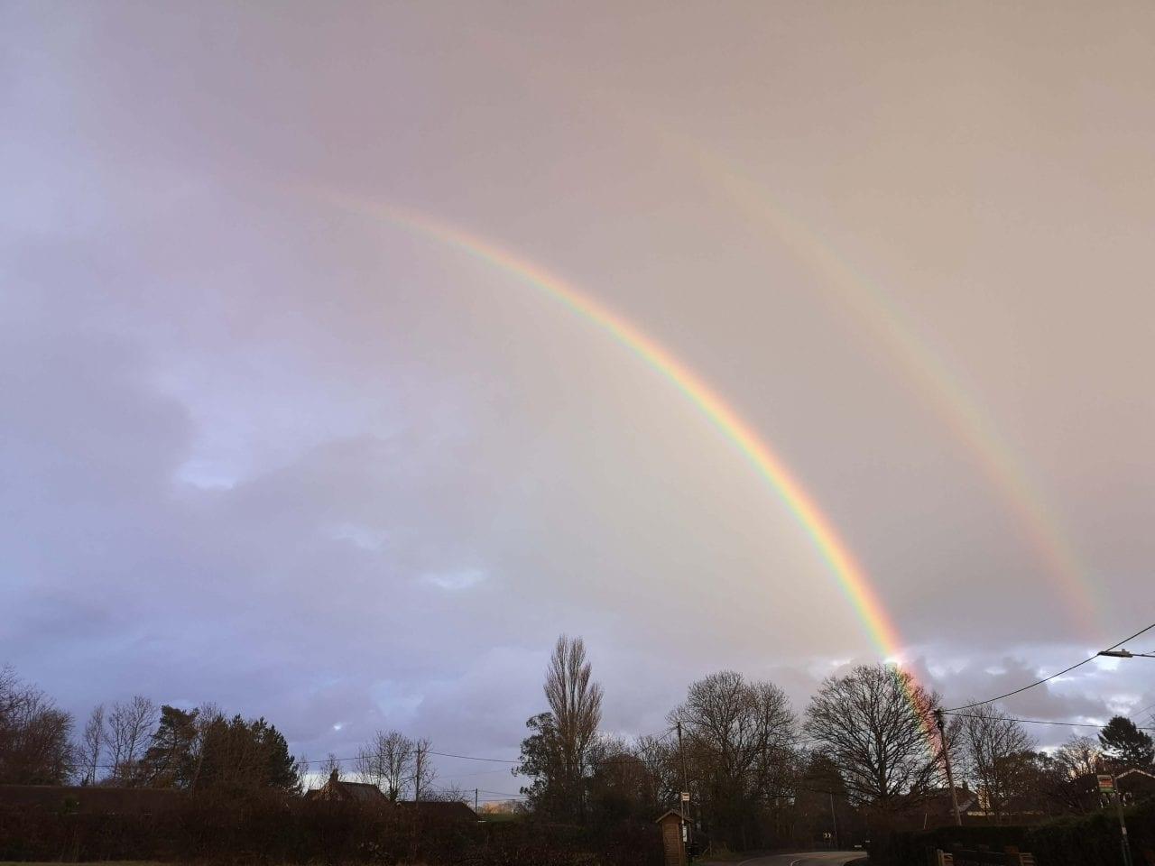 ! 7 IMG_20210122_160151 Double rainbow Reduced