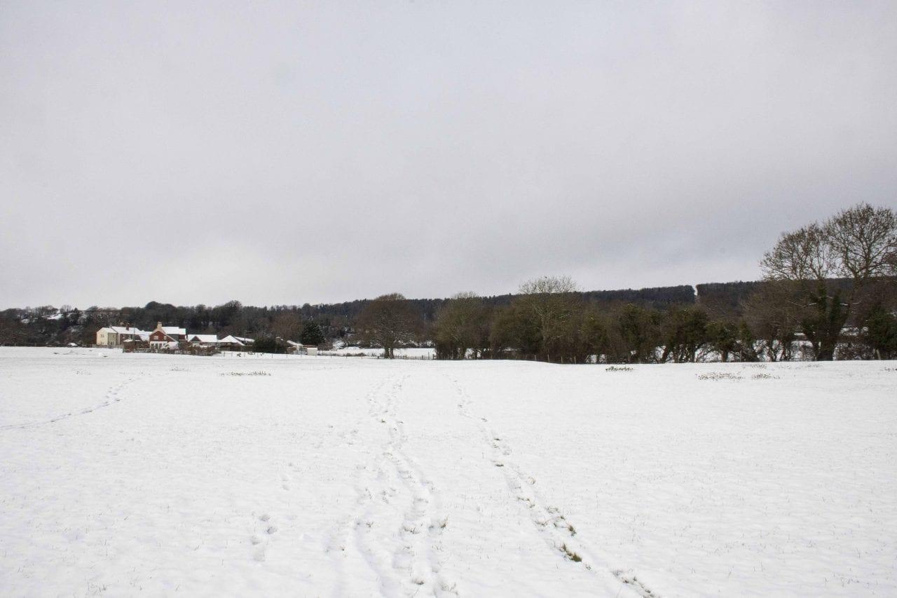 ! 2 Reduced DSC_9141 Across Snow's field E